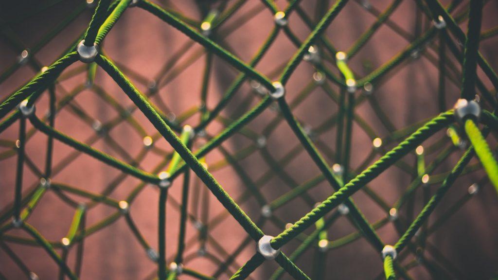 SEO: bot e spider analizzano i nodi della rete
