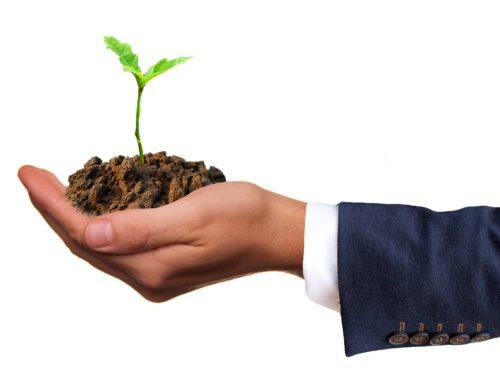 Digitalizzazione Pacchetti completi e personalizzati - Business to Business